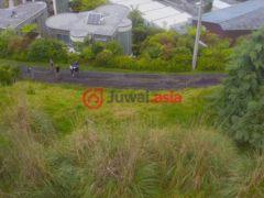 新西兰北部地区的房产