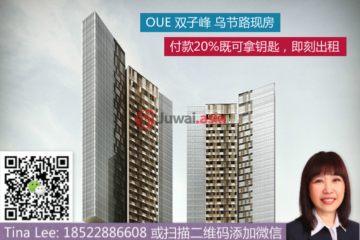 中星加坡房产房价_新加坡房产房价_居外网在售新加坡1卧1卫新开发的房产总占地51平方米SGD 1,310,000