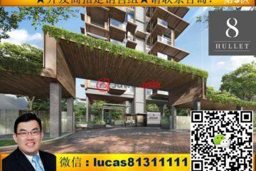 新加坡新加坡2卧1卫新房的房产
