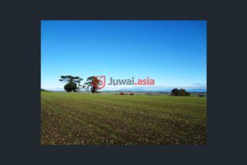 居外网在售澳大利亚White HillsAUD 2,627,000总占地201383平方米的土地