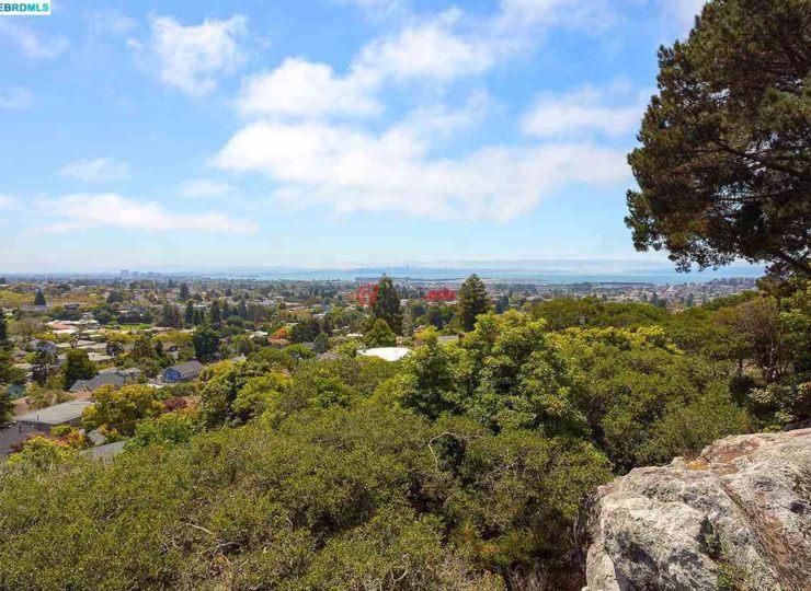 美国加州伯克利4卧5卫的房产